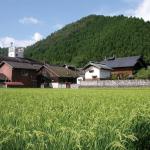 日本酒ポータルサイト「日本酒ツーリズム」に羽田酒造有限会社を掲載しました。